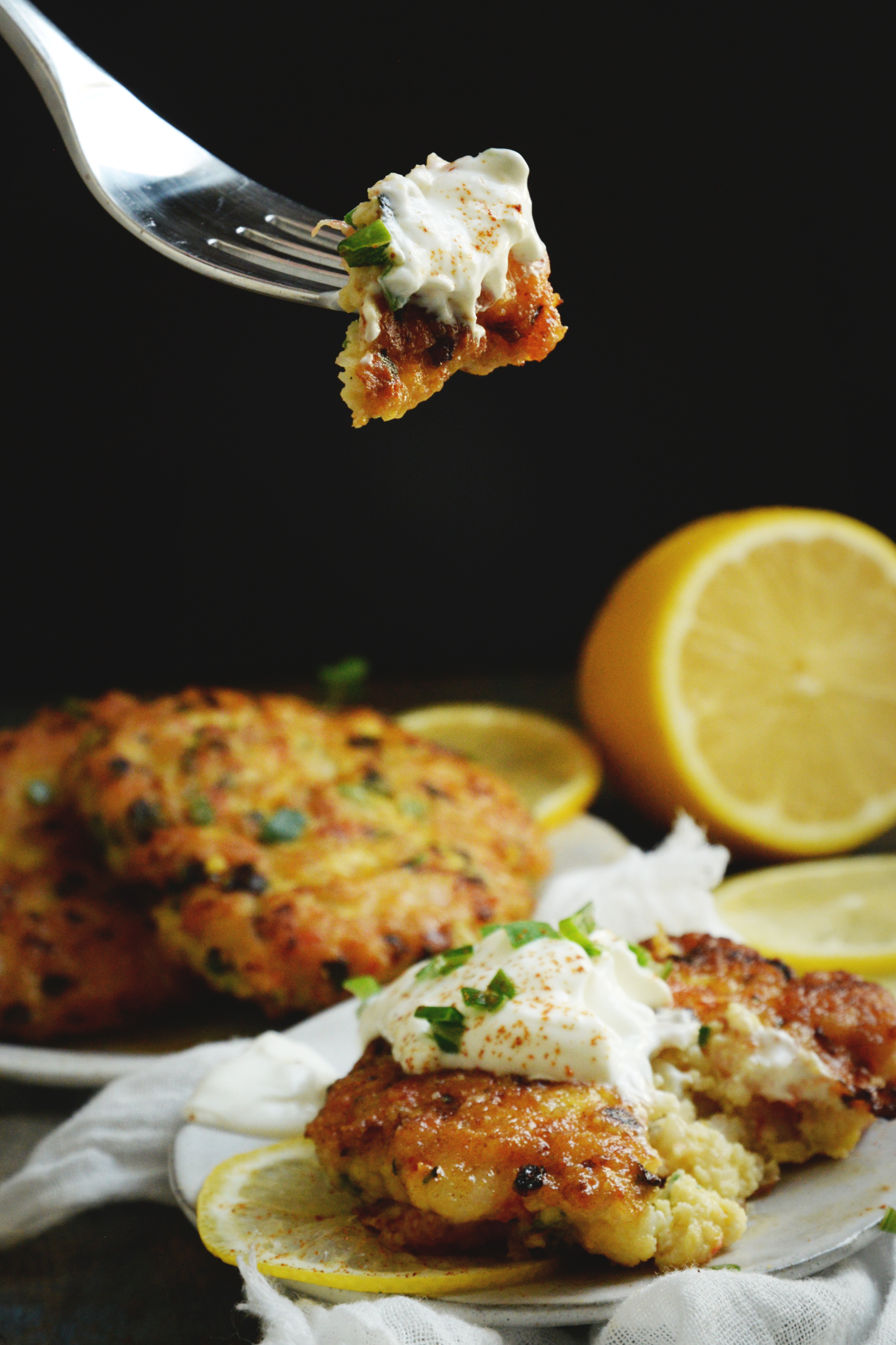 Shrimp Cakes Recipe-low-carb and keto-friendly-bite shot.